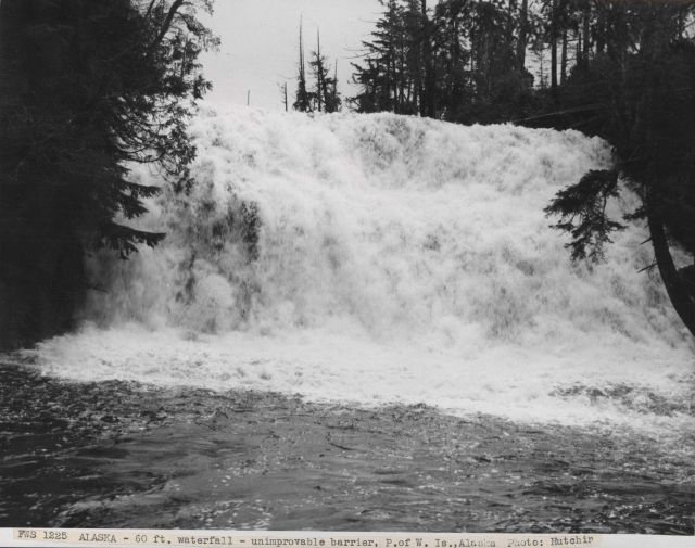 A 60-foot waterfall which was interpeted to be not possible to make passable for fish. Picture