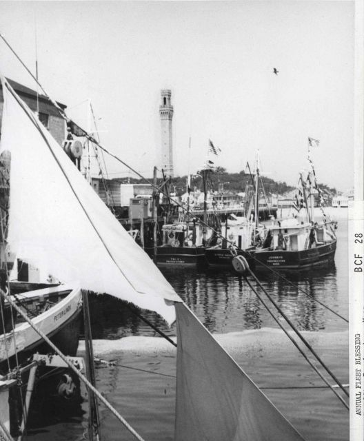 Fishing boats with Pilgrim Monument in the background Picture