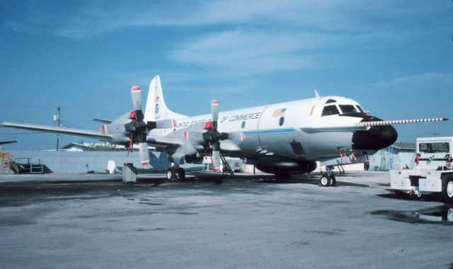 NOAA P-3 N42RF on the tarmac Picture