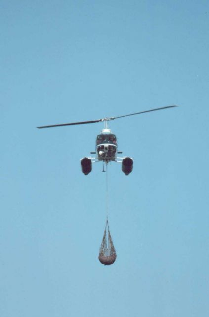 Lieutenant Budd Christman flying leased Bell 206 in Bering Sea returning to ship with seal carcass for dissection. Picture