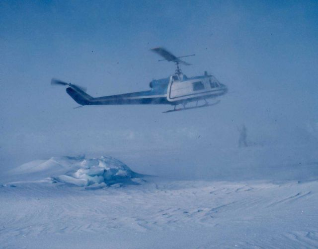 NOAA Bell UH-1M helicopter getting in position to weigh sedated polar bear. Picture