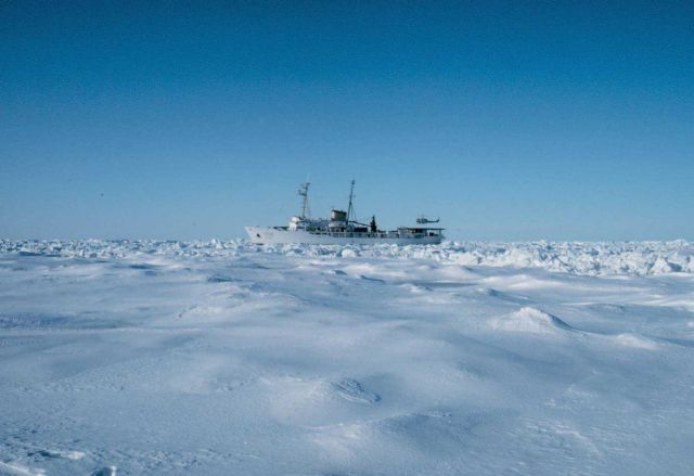 NOAA Ship SURVEYOR stuck in the ice of the Bering Sea southwest of Point Barrow Picture