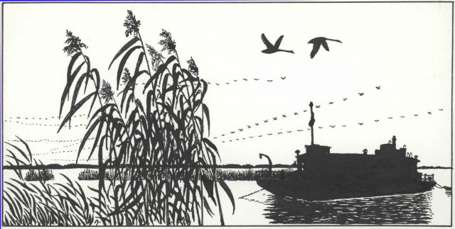 Pen and ink drawing of survey boat working in marsh Picture