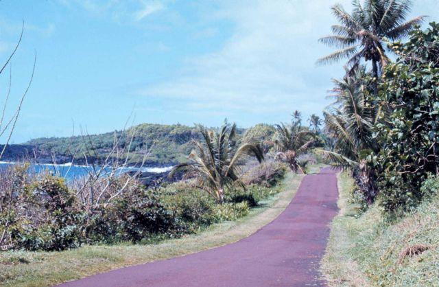 One-lane seaside road Picture