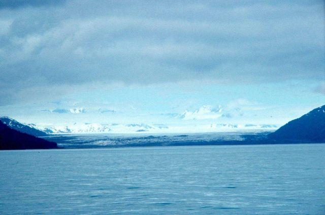 Taylor Glacier - western Prince William Sound Picture