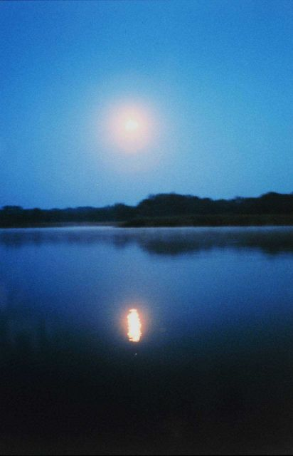 A full moon reflecting off the river - almost at dawn Picture