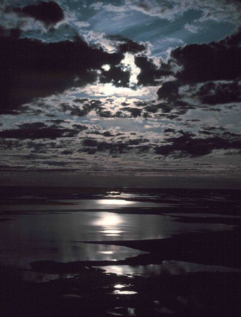Moonbeams reflecting off the Beaufort Sea. Picture