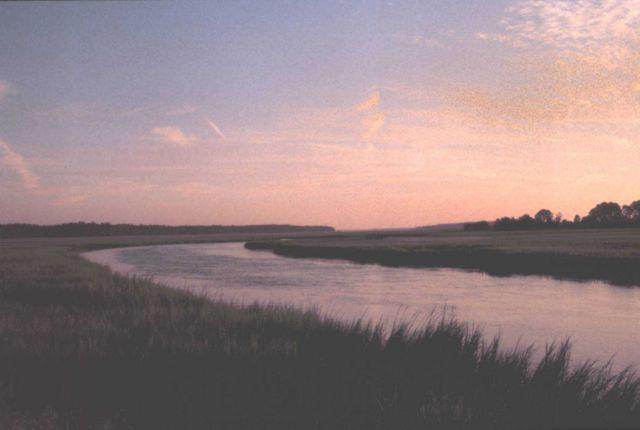 Sunrise over the salt marsh. Picture