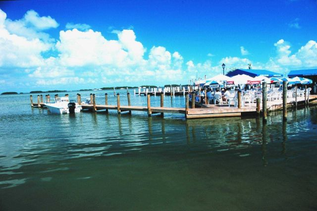 A pier at Islamorada Fish Co Picture