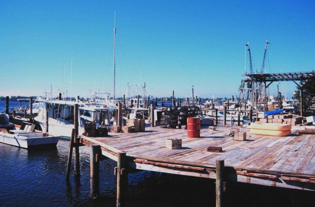 Shrimp, snapper, grouper, and stone crab fishing boats at A Picture