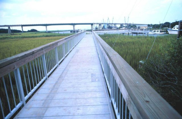 A view over the wetlands to the Lazaretto Creek Bridge Picture