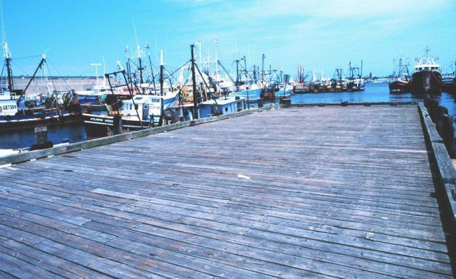 New Bedford fishing boats. Picture