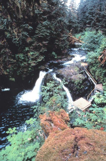 Appears to be a fish ladder bypassing a natural waterfall Picture