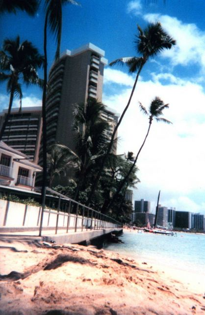 Hotels and palm trees at Waikiki. Picture