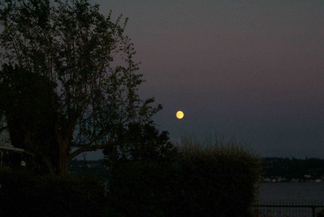 Moonrise over Tacoma as seen from Point Fosdick. Picture