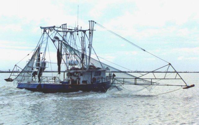 Shrimp boat. Picture