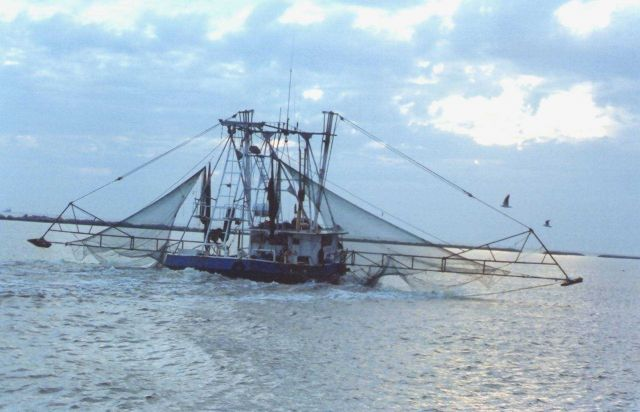Shrimp boat Picture
