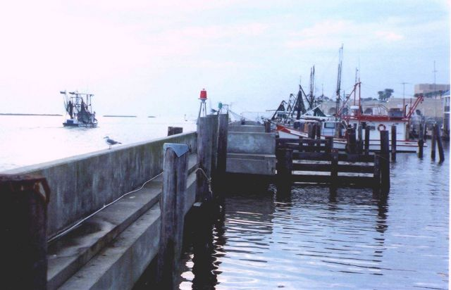Shrimp boat docks. Picture