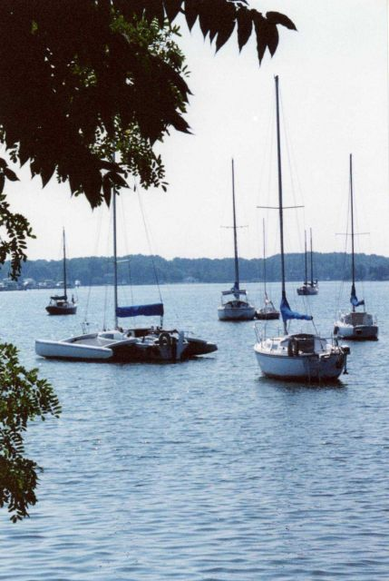 Sailboats moored in the West River. Picture