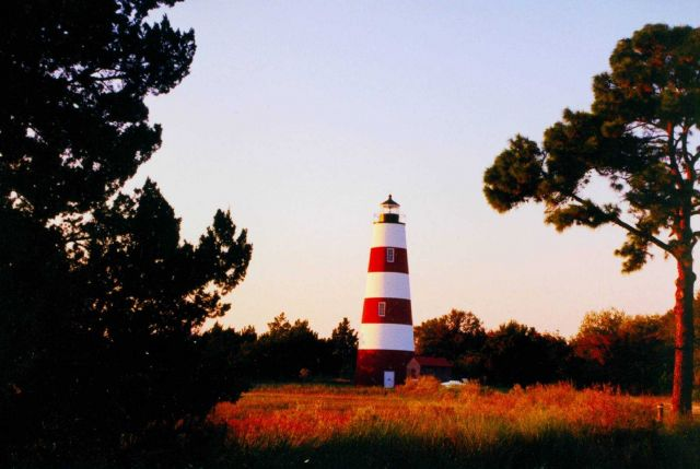 Sapelo Island Lighthouse Picture