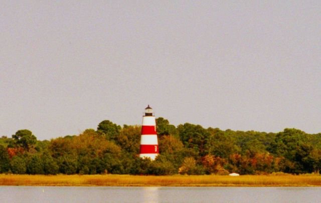 Sapelo Island Lighthouse from Doboy Sound Picture