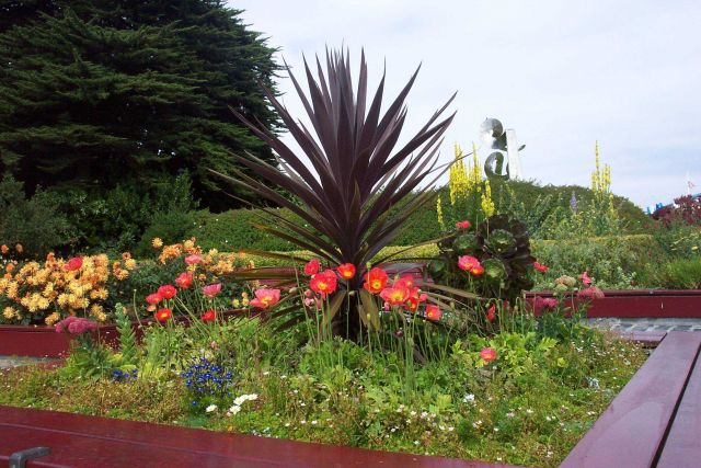 One of many public gardens beautifying San Francisco. Picture