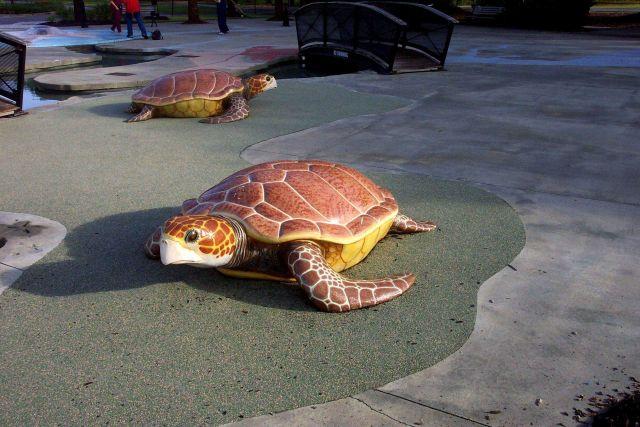 Sea turtle sculpture at Daniel Island Children's Park. Picture
