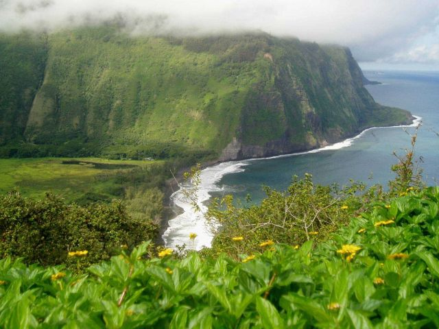 Waipi'o Valley Picture