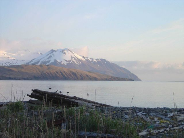 Sunrise over Unalaska Bay Picture