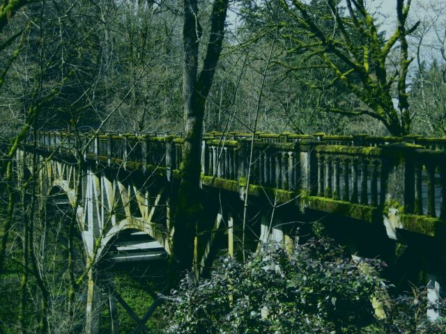 The old highway bridge at Multnomah Falls covered in moss Picture