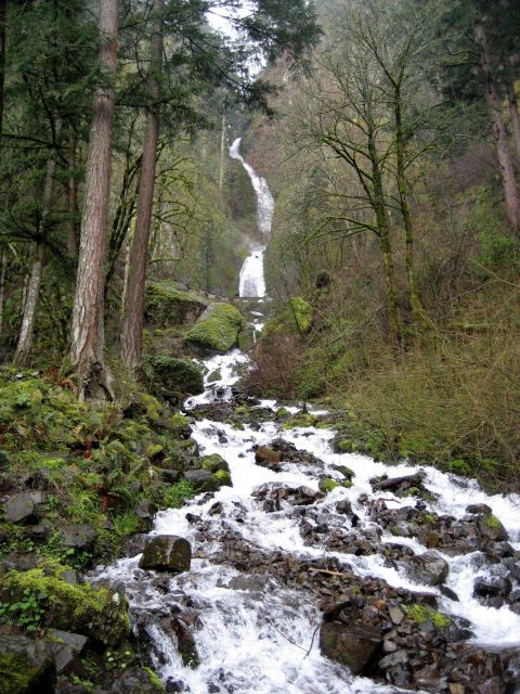 A babbling waterfall flowing to the Columbia River Picture