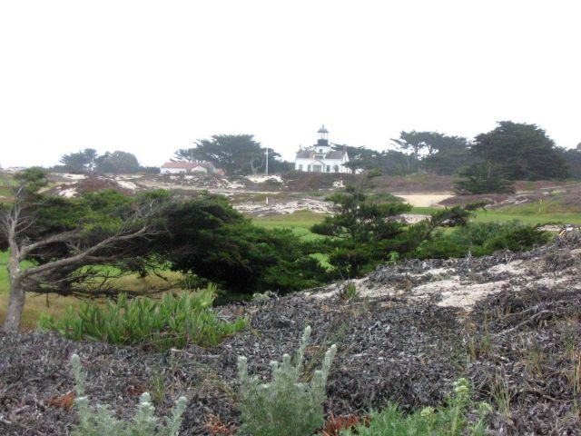 The Point Pinos Lighthouse seen over the Asilomar Dunes. Picture