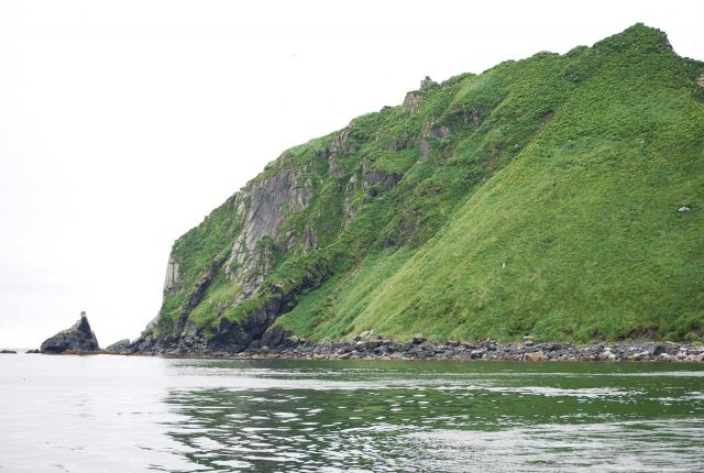 The white specks in the green are sea birds seen on Big Koniuji Island. Picture