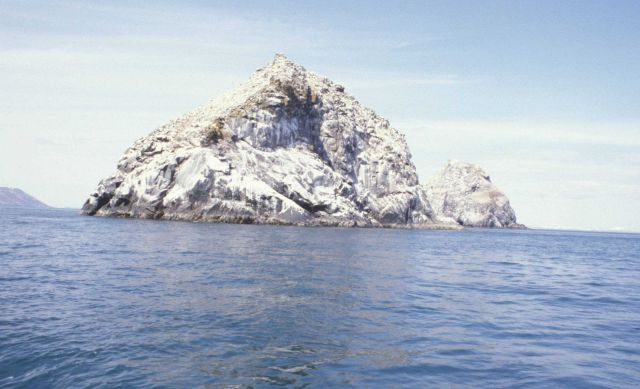 Offshore rocks covered with bird excrement Picture