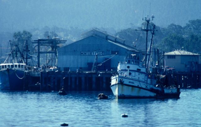 A scene out of Cannery Row Picture