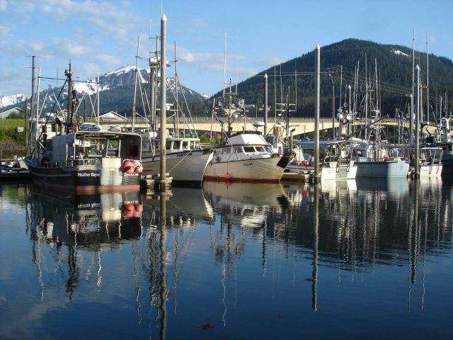 Small boat marina at Juneau. Picture
