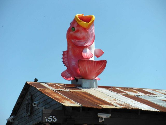Fish adorning seafood restaurant in Pascagoula area. Picture
