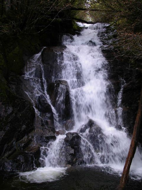 A pretty little waterfall in the Ketchikan area. Picture