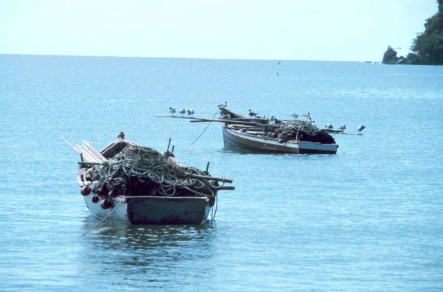 Tobagoan fishing boats loaded with nets and moored in Man-of-War Bay Picture