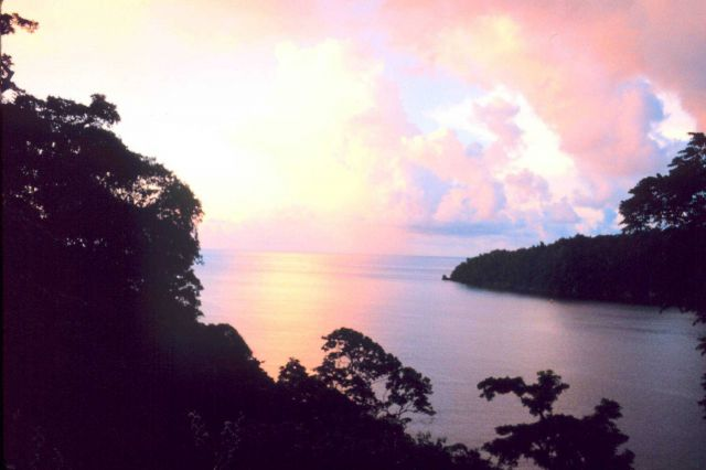 Sunset over Man-of-War Bay Picture