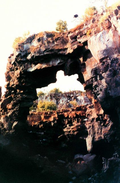What appears to be a swallow-tailed gull - Creagrus furcatus - is framed in a lava arch along a Galapagos shoreline. Picture
