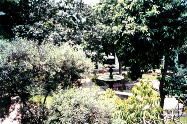 A garden on the grounds of a Lima cathedral. Picture