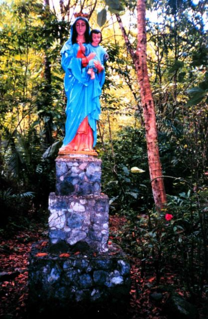 A statue of the Virgin Mary on Isla Gorgona. Picture