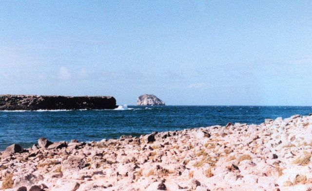 Rock and sea at Plazas Island Picture