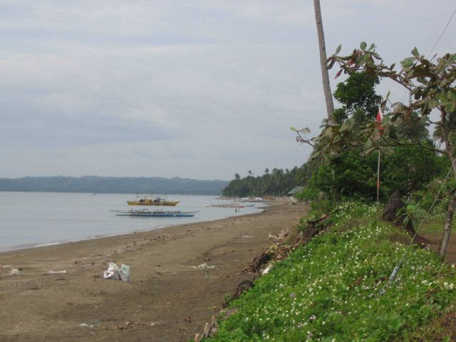 Donsol Beach at Amor Resort in the Legaspi area. Picture
