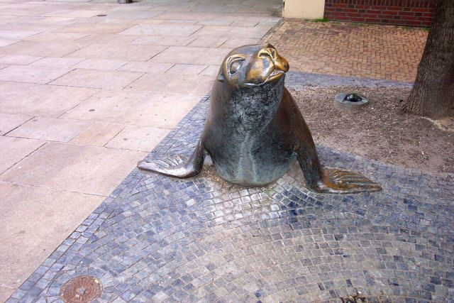 Sculpture of harbor seal. Picture
