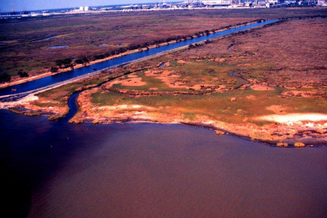 Grand Bay National Estuarine Research Reserve Picture