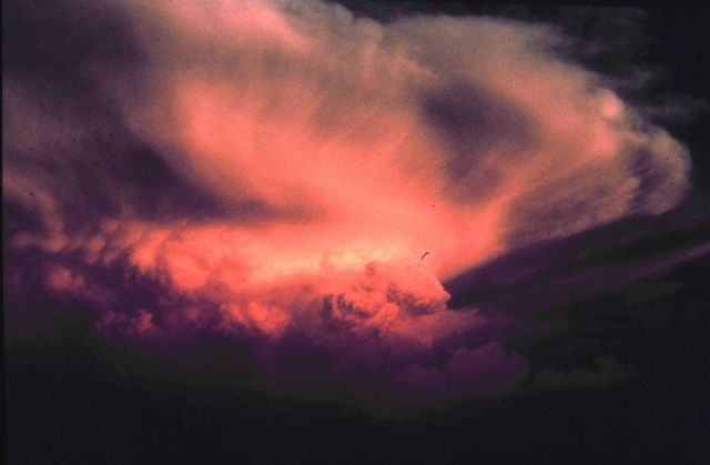 Thunderstorm at sunset. Picture