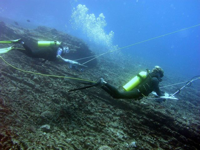 Two divers are towed behind a small boat in order to survey a large area of coral reef. Picture