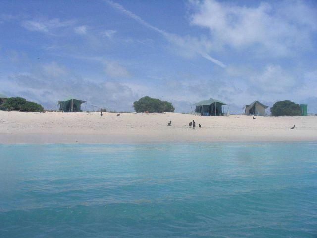 Lisianski Island Picture